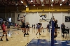 19th Volleyball Team Camp Photo