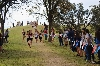 13th Regional Cross Country Meet Photo