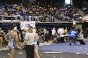 22nd State Wrestling Meet Photo