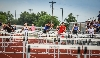 44th Area Track Meet Photo