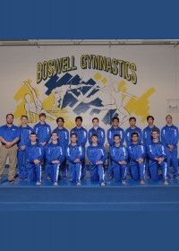 The Entire Boy's Gymnastics Team