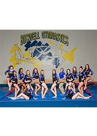 Boswell Girls Gymnastics Team