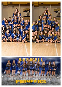 The Boswell  Volleyball Teams