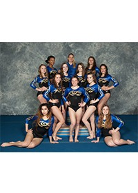 Boswell Girl's  Gymnastics Team