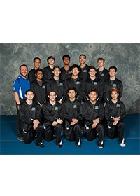 Boswell Boy's  Gymnastics Team